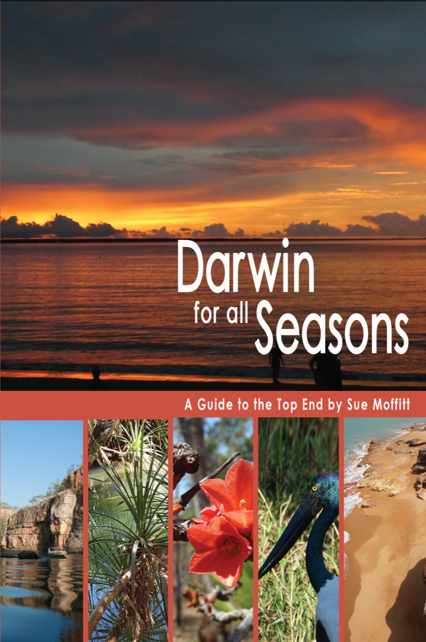 Guide Book on Darwin in the Wet Season